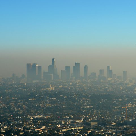 pollution-and-working-conditions-top-esg-investor-concerns